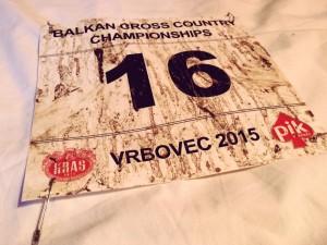 Read more about the article Kampionati Ballkanik i Krosit, Vrbovec Kroaci, 22.11.2015